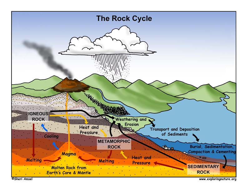 Miss maicherx27s science site rock cycle sedimentaryrock ccuart Image collections